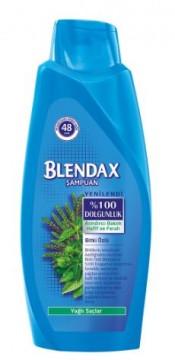 Blendax Bitki Özlü Şampuan 550 ML